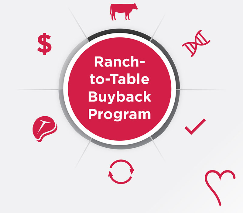 HeartBrand Cattle infographic showing the benefits of participating in the HeartBrand ranch-to-table buyback program. Any ranchers raising registered Akaushi cattle are invited to participate.